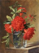 Gerard Van Spaendonck - Red Carnations and a Sprig of Berries