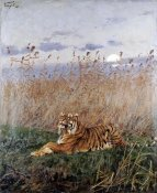 Geza Vastagh - Tiger In The Rushes