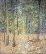 Soren Emil Carlsen - A Light In The Forest