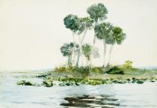 Winslow Homer - St. Johns River, Florida