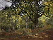 Claude Monet - Bodmer Oak, Fontainebleau Forest, 1865