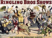 Unknown - Ringling Bros. Shows