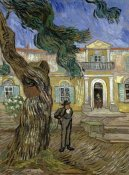 Vincent Van Gogh - Tree and Man (Saint Paul Hospital at Saint Remy)