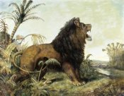 William Huggins - A Lion in a Jungle