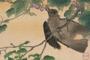 Kuwagata Kesai - Bird Eating a Grape