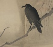 Unknown - Crow on a willow branch, 1875