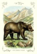 Unknown - The Grizzly Bear, 1900