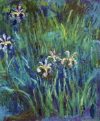 Claude Monet - Irises 1914-1917