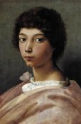 Raphael - Portrait Of A Young Man