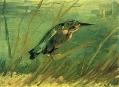 Vincent Van Gogh - Kingfisher
