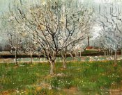 Vincent Van Gogh - Plum Trees In Blossom