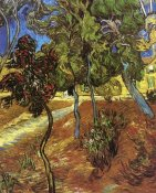 Vincent Van Gogh - Tree In Garden St Paul Hospital