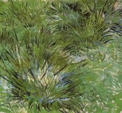 Vincent Van Gogh - Clumps Of Grass 1889