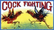Retrobot - Cock Fighting