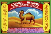 Unknown - Camel Brand Extra Selected Firecracker