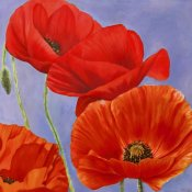 Luca Villa - Dance of Poppies I