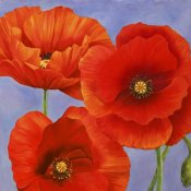 Luca Villa - Dance of Poppies II