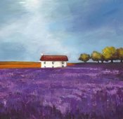 Philip Bloom - Field of Lavender (Right Detail)