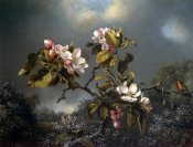 Martin Johnson Heade - Apple Blossom And Hummingbird