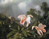 Martin Johnson Heade - Jungle Orchids And Hummingbirds 1872