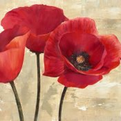 Cynthia Ann - Red Poppies II