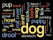 BG.Studio - Dog Words 1