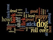 BG.Studio - Dog Words 2