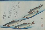 Utagawa Hiroshige (Ando) - School of Five Seat Trout from the Series Fish, ca. 1835