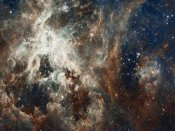 NASA - Tarantula Nebula - Compressed Version