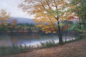 Diane Romanello - Golden Autumn