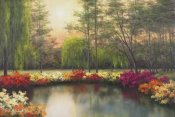 Diane Romanello - Autumn Sunset