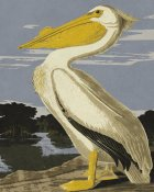 BG.Studio - Audubon Decor - Pelican