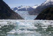 Matthias Breiter - South Sawyer Glacier and bay full of bergy bits, Tracy Arm-Fords Terror Wilderness, Tongass National Forest, Alaska