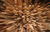 Flip De Nooyer - Milled wood planks in a stack, Europe