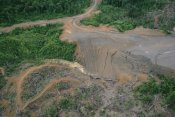 Gerry Ellis - Rainforest logging activities near eastern boundary of the Kikori Delta, Papua New Guinea