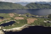 Gerry Ellis - Aerial view of clearcut temperate rainforest on Prince of Wales Island, Tongass National Forest, Alaska