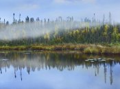 Tim Fitzharris - Fog over lake, Ontario, Canada