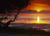 Tim Fitzharris - Sunset over Anne's Beach, Florida
