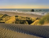 Tim Fitzharris - Coastline, Pistol River Beach, Oregon