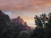 Tim Fitzharris - The Watchman, Zion National Park, Utah