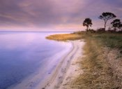 Tim Fitzharris - Beach along Saint Joseph's Bay, Florida