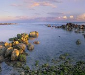 Tim Fitzharris - Coastal rocks, Bahia Honda Key, Florida