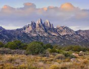 Tim Fitzharris - Organ Mountains, Chihuahuan Desert, New Mexico