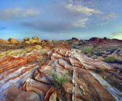 Tim Fitzharris - Rainbow Vista, Valley of Fire State Park, Nevada