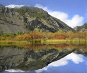 Tim Fitzharris - Boulder Mountains reflected in beaver pond, Idaho