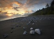 Tim Fitzharris - Rocks on beach, Corcovado National Park, Costa Rica