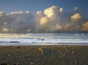 Tim Fitzharris - Beach and waves, Corcovado National Park, Costa Rica