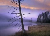 Tim Fitzharris - Yellowstone Lake, Yellowstone National Park, Wyoming