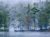 Tim Fitzharris - Emerald Lake in fog, Emerald Lake State Park, Vermont