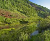 Tim Fitzharris - Rico Mountains and Dolores River backwaters, Colorado